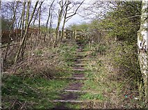 SJ6298 : Footpath on Trackbed of ex Great Central Railway by Raymond Knapman