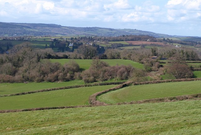 Countryside near Waddon