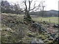 NN8759 : Dilapidated drystane dyke by Russel Wills
