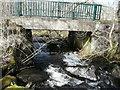NN8659 : Bridge over Middleton Burn by Russel Wills