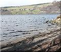 NN8258 : Beach on shore of Loch Tummel by Russel Wills
