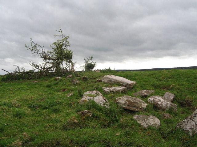 """Site of """"Fenham Castle"""""""