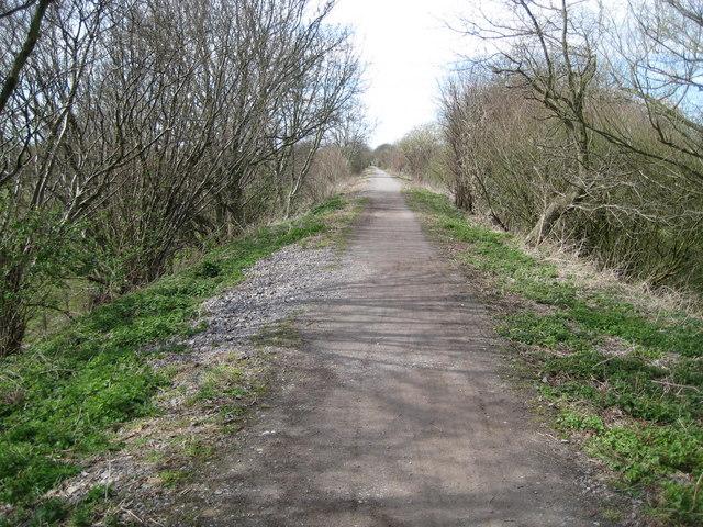 Princes Risborough: The Phoenix Trail