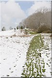 SU6022 : Path along the top of Beacon Hill after April snow by Peter Facey