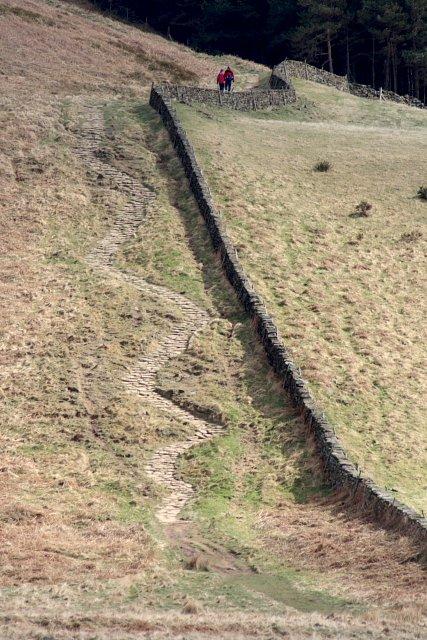 Stony Path up to Newton Moor