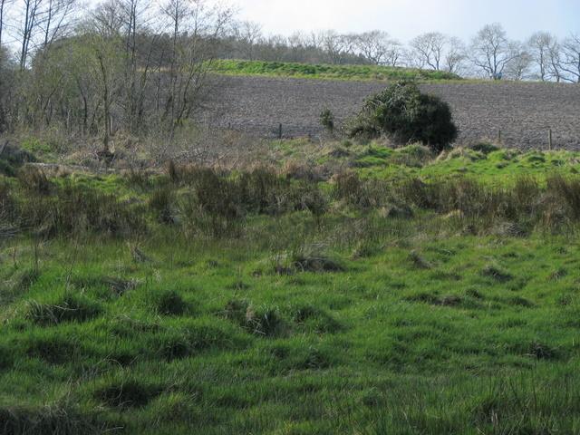 Thora's Fort, Clandeboye