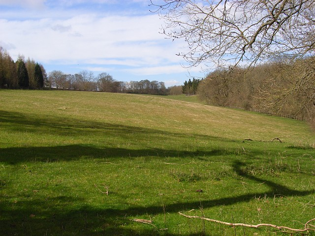 Pasture and woodland below Russell's Water