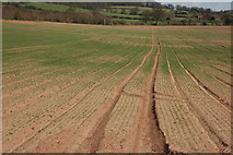 SO7334 : Arable land at Bromesberrow by Philip Halling