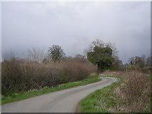 SJ3519 : Drive to Acksea Farm by Row17