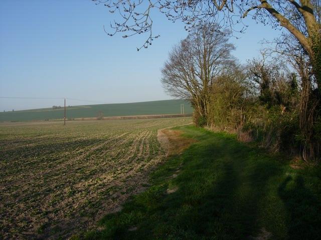 Footpath south of Harlton