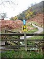 NY2223 : Footpath to the Hope Memorial Camp by Oliver Dixon