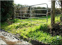 J4846 : Gate near the Quoile (3 of 3) by Albert Bridge
