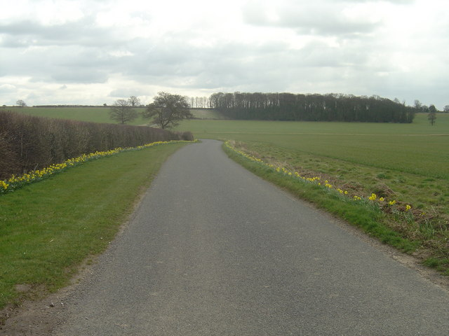 The way to Orton wood