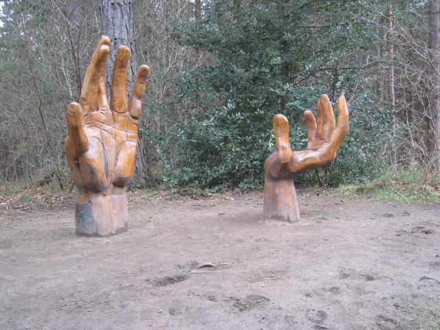 """Hands"", Chopwell Wood"