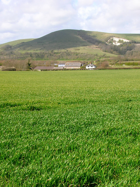 Comp Farm