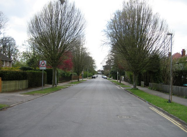 Glebe Road - looking up to Hills Road by Sandy B