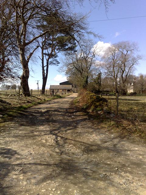 Farm road to Sittyton