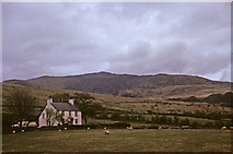 SH5654 : Farmhouse and sheep, Snowdon in background taken 1965 by Christine Matthews