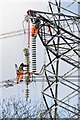 SU4420 : Pylons are bigger than you think (4) by Peter Facey