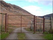 NH0362 : Metal Gate by Stephen Middlemiss