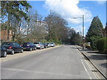 SU6351 : Northerly view along Cliddesden Road by Sandy B