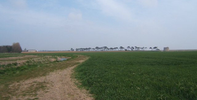 Field and drainage ditch near Alderton