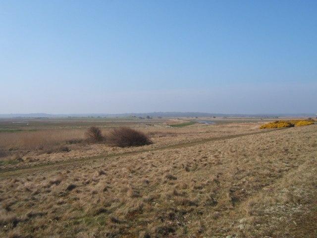 Marshland near Minsmere