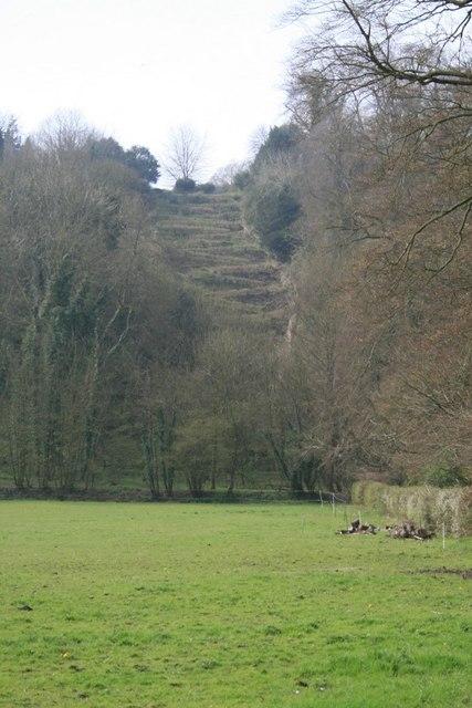 The Zig Zag path up Selborne Hanger