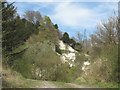 TQ8455 : Overgrown quarry by Stephen Craven