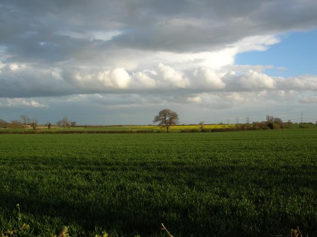 Towards Belle View Farm