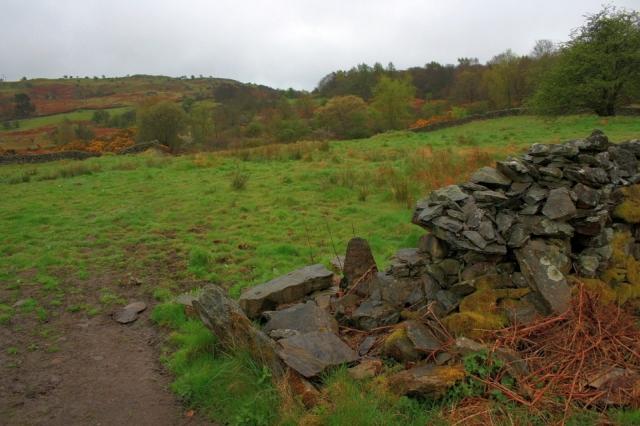 Ruined Wall, Mungeon Farm