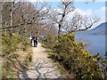 NY2520 : Footpath alongside Derwent Water by Roger Smith
