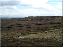 NY5108 : Across the moor to Brown How by David Brown