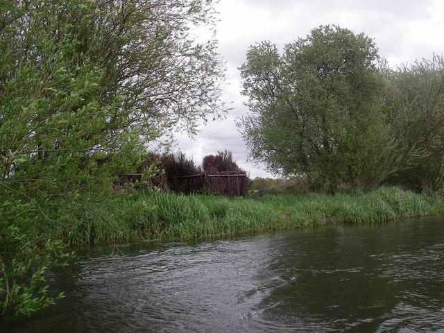 Shooting Hide beside the river Avon
