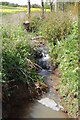 SO6625 : The Ell Brook near its source in Linton by Roger Davies