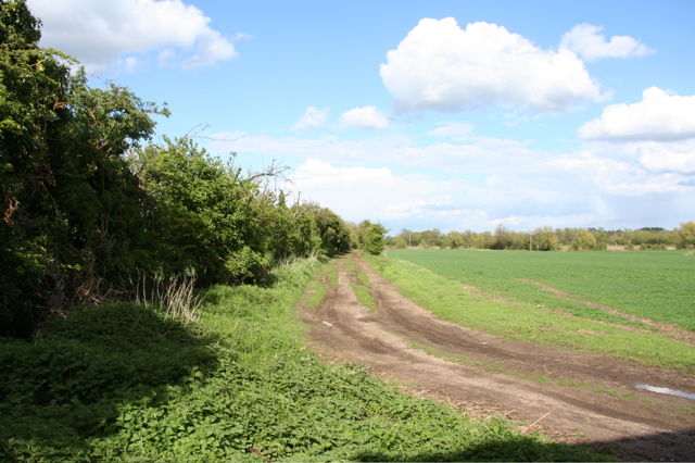 Track from Rectory Farm to Dernford Farm