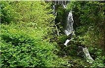 J4681 : Waterfall, Crawfordsburn Glen (5) by Albert Bridge
