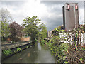 TQ2574 : River Wandle in Wandsworth by Stephen Craven