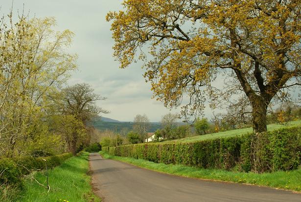 The Ballyhone Road near Glenoe