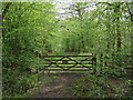 TL3408 : Gate into Hoddesdon Park Wood by Talisman