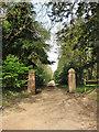 TG0634 : Entrance to Lodge Plantation by Evelyn Simak