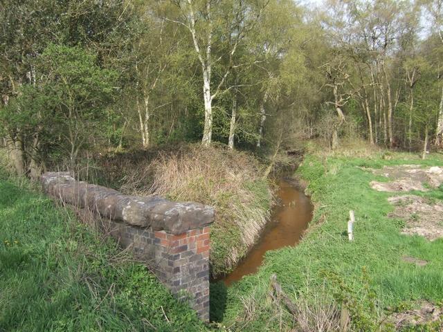 River Tern passing under A53 bridge