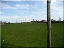 NT1067 : Myriad of Poles near Kirknewton by Chris Heaton