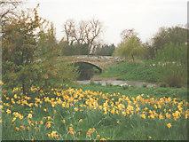 SE7485 : Sinnington Bridge by Stephen Craven