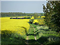 TL4060 : Bridleway to Barn by Julian Paren