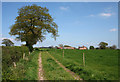 SJ5837 : Farm track to Ashacres Farm by Espresso Addict