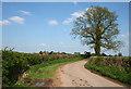 SJ5836 : Lane south of Heath Farm by Espresso Addict