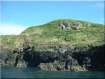 SH1824 : The summit of Ynys Gwylan-fawr by David Medcalf