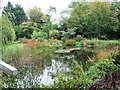 TF7602 : Gooderstone Water Gardens, Gooderstone, Norfolk by David Mills