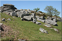 SX5373 : Dartmoor: Heckwood Tor by Martin Bodman